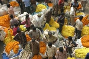Kalkata - květinový trh